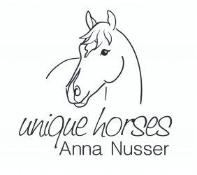 unique horses